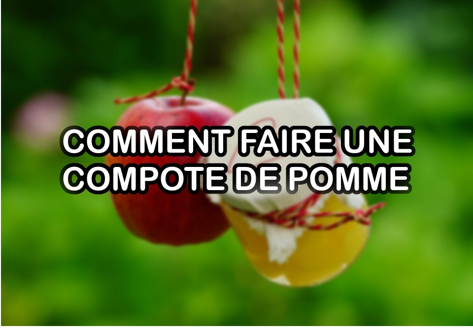 COMPOTE DE POMME